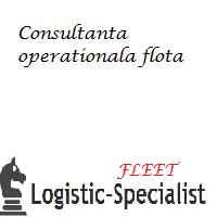 audit operational flota