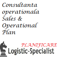 audit operational planificare, S&OP Plan