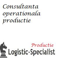 audit operational productie