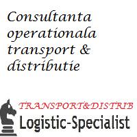 audit logistic transport si distributie
