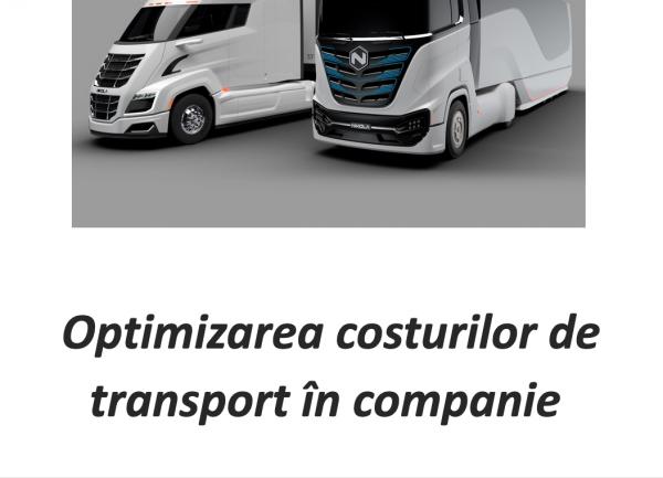 optimizarea costurilor de transport