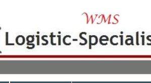 consultanta operationala imlementare WMS
